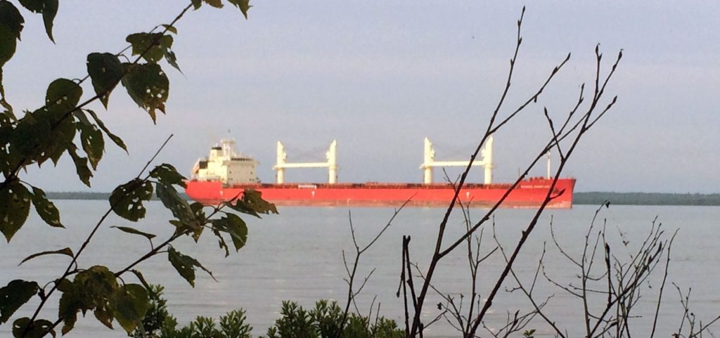 Shipping vessel viewed from shore at Dunbar Park, Michigan.