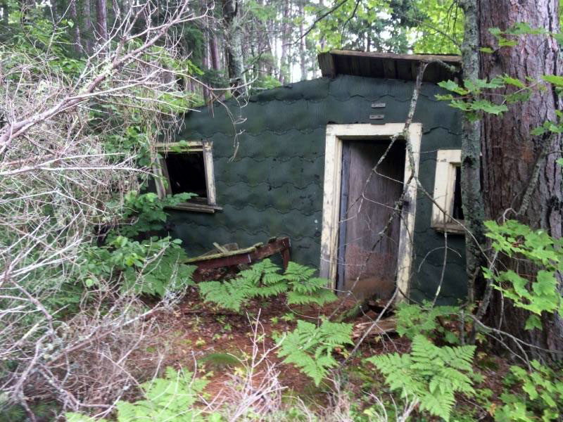 The entrance to an old abandoned cabin just outside Ontonagon, Michigan.